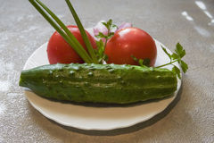 Świeży ogórek, pomidor i cebula na talerzu, Zdjęcie Stock