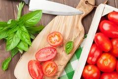 Świeży ogrodowy pomidorów gotować Obrazy Stock