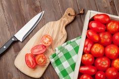 Świeży ogrodowy pomidorów gotować Zdjęcia Stock