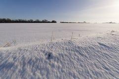 Świeży opad śniegu w Suffolk Fotografia Royalty Free