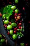 Świeży, organicznie agrest w ceramicznym pucharze, Obraz Royalty Free