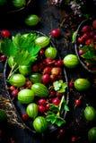 Świeży, organicznie agrest w ceramicznym pucharze, Obraz Stock