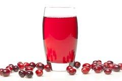Świeży Organicznie Cranberry sok obrazy royalty free