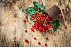 Świeży organicznie czerwony rodzynek Rozrzucony czerwony rodzynek na drewnianym tle Fotografia Royalty Free
