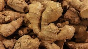 Świeży organicznie imbir stoi out wśród wiele wielkiego tło imbira w rynku Zdjęcia Stock