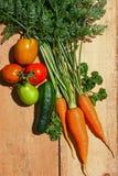 Świeży organicznie ogród kultywował warzywa na drewnianej desce Obraz Royalty Free