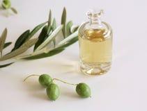 Świeży Organicznie oliwa z oliwek z wiązką oliwki i greenery na odosobnionym na białym tle Pojęcie zdrowy styl życia Zamazany b zdjęcie stock