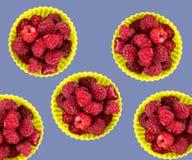 Świeży organicznie rapsberry Zdjęcia Royalty Free