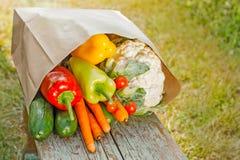 Świeży organicznie warzywo obrazy stock