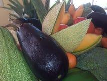 Świeży owoc i warzywo, kantalup, oberżyna, zucchini, dalej zdjęcia royalty free