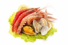 świeży owoce morza Obraz Royalty Free