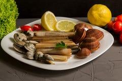 Świeży owoce morza, vongole z cytryną i sałatka na popielatym tle, obraz stock