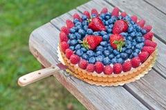 Świeży owocowy tarta Zdjęcie Stock