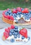 Świeży owocowy tarta Zdjęcia Royalty Free