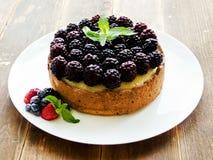 świeży piec cheesecake Obraz Royalty Free