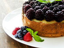 świeży piec cheesecake Obraz Stock