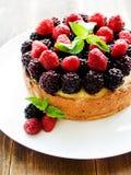świeży piec cheesecake Fotografia Royalty Free