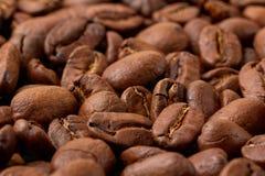 Świeży piec kawowych fasoli zakończenie Obrazy Stock