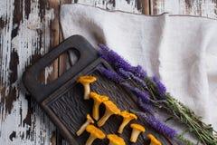 Świeży pieczarki chanterelle na drewnianym tle Obrazy Royalty Free