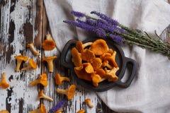 Świeży pieczarki chanterelle na drewnianym tle Fotografia Stock