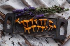 Świeży pieczarki chanterelle na drewnianym tle Zdjęcia Stock
