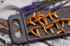 Świeży pieczarki chanterelle na drewnianym tle Zdjęcie Royalty Free
