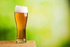 Świeży piwny szkło Obrazy Stock