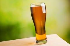 Świeży piwny szkło Obrazy Royalty Free