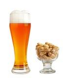 Świeży piwo & arachid w szkle XXL zdjęcia royalty free