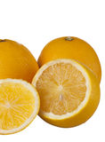 Świeży pomarańczowy morski odosobniony na białym tle fotografia royalty free