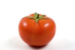 świeży pomidor Obraz Stock