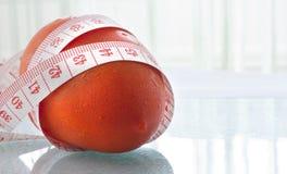 Świeży pomidor Obraz Royalty Free