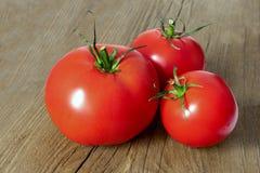 Świeży pomidoru kłamstwo na drewnianym stole zdjęcia stock