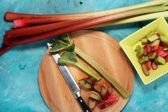 Świeży rabarbar na błękitnym tle Zdrowa organicznie roślina fotografia stock