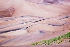 Świeży ranku światło na Wielkim piasek diun Krajowym zabytku wewnątrz Fotografia Royalty Free