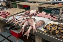 Świeży rybi chwyt na sprzedaży przy lokalnym rybim rynkiem Zdjęcia Royalty Free