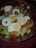 Świeży salade dom robi obraz stock