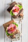 Świeży salami z sałatą i pomidorem Obraz Royalty Free