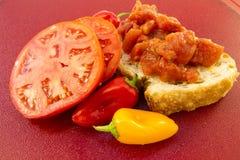 świeży salsa Zdjęcia Stock