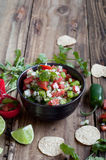 Świeży salsa Obrazy Royalty Free