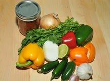 Świeży salsa Obrazy Stock