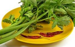 Świeży seler i wysuszeni chili pieprze Fotografia Royalty Free