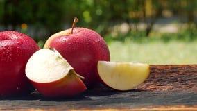 Świeży soczysty jabłko zbiory
