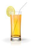 świeży sok Obraz Royalty Free