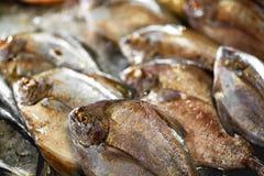 świeży surowy jedzenie Ryba przy rynkiem Owoce morza zdrowego żywienia obraz stock