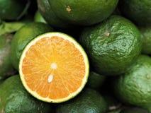 Świeży tangerine Zdjęcie Stock