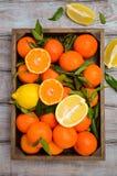 Świeży tangerine clementine, cytryny z liśćmi w drewnianej tacy na drewnianym tle i fotografia stock