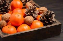 Świeży tangerine clementine z dokrętkami i rożkami w drewnianej tacy na ciemnym drewnianym tle zdjęcie stock