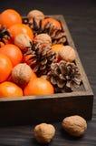 Świeży tangerine clementine z dokrętkami i rożkami w drewnianej tacy na ciemnym drewnianym tle obraz royalty free