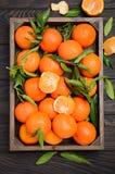 Świeży tangerine clementine z liśćmi w drewnianej tacy na ciemnym drewnianym tle zdjęcia royalty free